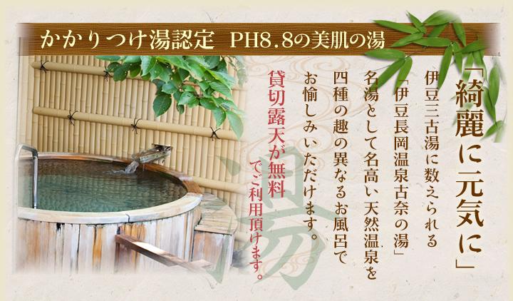 かかりつけ湯認定 PH8.8の美肌の湯